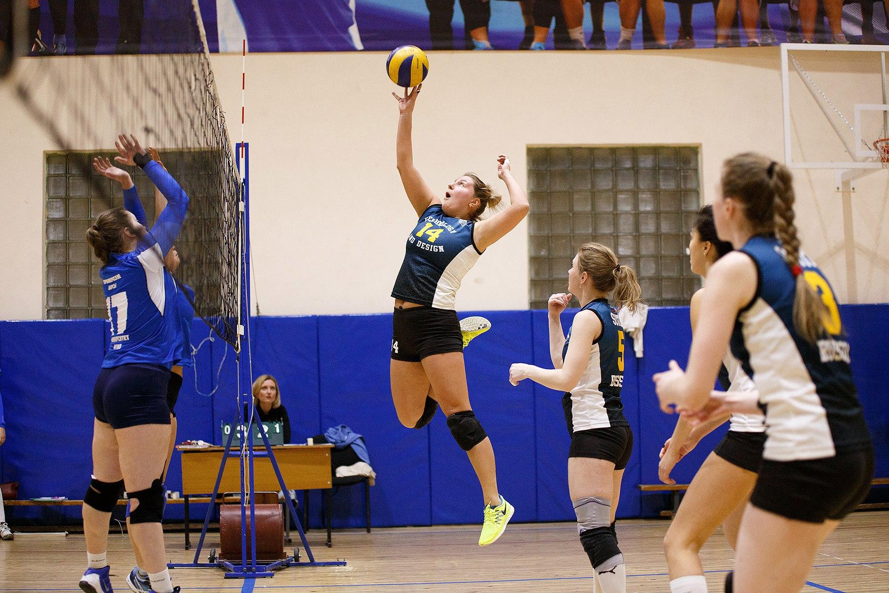 Volleyball direkt